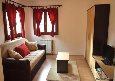 vila-mihajlovic-tara-apartman-s1