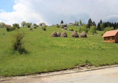 Tara-plac-prodaja-Racanska-Sljivovica (2)